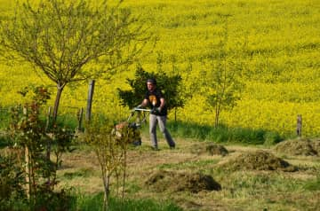 Fabien passes the grass mower durinf a housesitting in France. Isabelle loves mowing too!