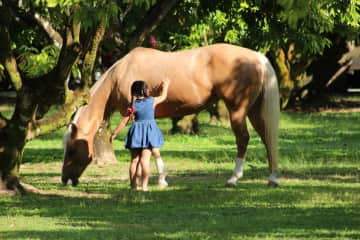 My girl with Kathyra our horse