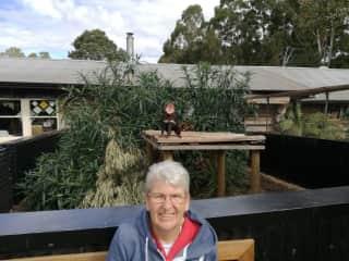 with red devil at Tasmania wildlife park April 17