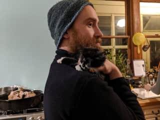 Helping socialize little kitten Pip!