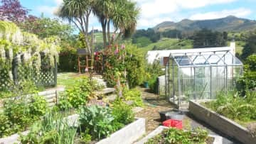 A part of my big garden with veggie garden and greenhouse in New Zealand