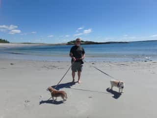 James walking Tex and Toby on a Maine beach