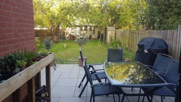 Garden from house - afternoon
