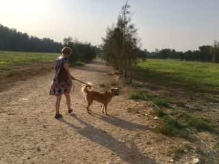 Me dog walking in Doha