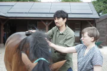 Horse grooming at my sister's stable