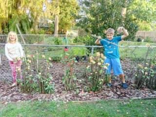 Grandkids in our garden