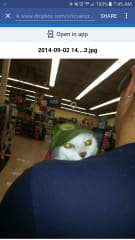 This is Juno with Nicole at Petsmart.