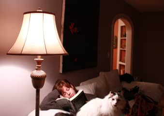 Reading with a cat close by is one of the joys of life.