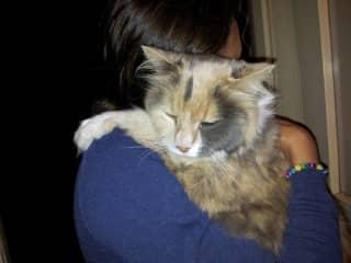 Cuddles with Sammy