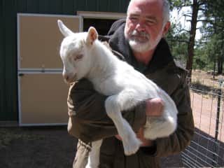 Bob with one of the newborn goats