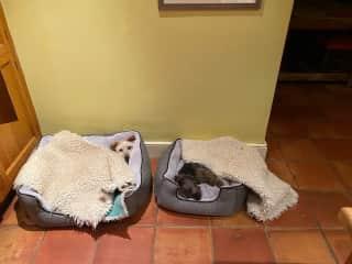 Minnie and Maisie