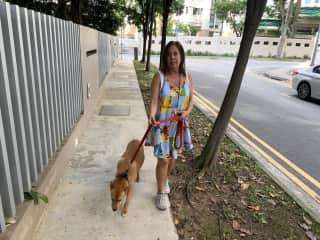 Walking Magic in Singapure.