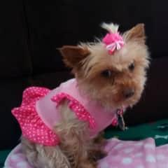 Nana in her pink dress