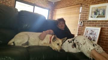 Stella dog sitting for a week