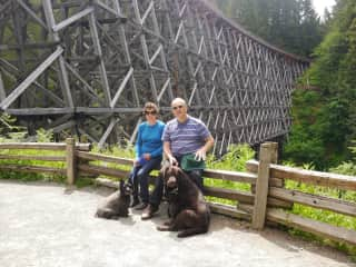 Levi  and Fergus on a walk across the Kinsol Trestle Vancouver Island
