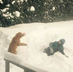 Éloi is having fun in the snow with Eddie. (Canada)
