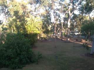 View from side veranda