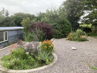 Back garden!