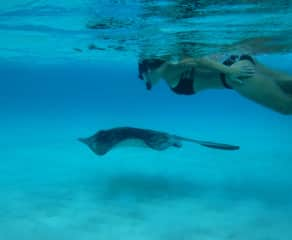 Snorkeling at Stingray City in the Cayman Islands