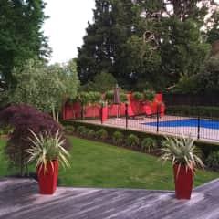 Our backyard area
