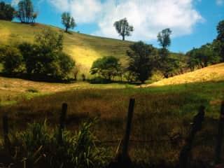 Al's photo of Martinique hillside