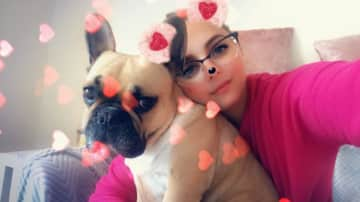 Sunday is another one of my friends Frenchie's, I've had the pleasure of having to stay a few times. She keeps you up all night with her loud snores but she makes up for it during the day with lots of snuggles.