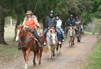 Leading a trail ride at Buck Valley Ranch