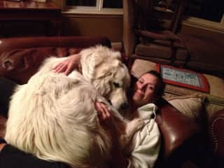 This is me with the love of my life, Kevin, a 105 lb. Great Pyrenees