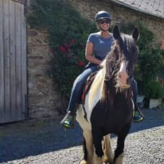Riding the Irish cobbs in France! I'll take any opportunity to ride horses.