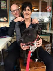 Dog friendly cafes feature in our travels