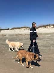 One of Patty's favorite activities--walking dogs on the beach.