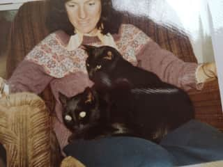 Dee - a picture from the past of our two black cats called Male and Female