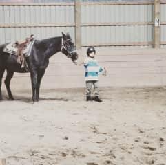 Kids horseback riding, I know a bit about horses but I am not an expert