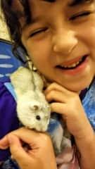 Hamster cuddles tickle!