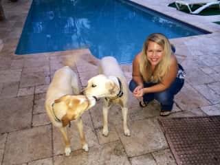 Lola and CJ - former pet sit in Miami, FL