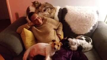 Alfie, Max and Blue   Solva Wales