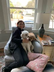 Cuddling with Cody and Wilder at Trusted Housesit in Santa Cruz (01 March 2019 - 03 March 2019)