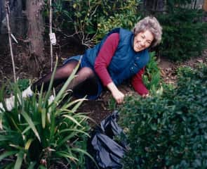 Alison gardening (before her hair turned completely grey!)