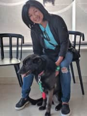 Happy ending after Lola in Portugal had to be rushed to the emergency vet clinic.