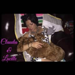 Getting Lucille snuggles. #ShesNotSpoiled