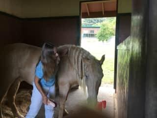Cynthia, grooming Fabio.