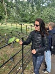 Hyde Park with the bird.