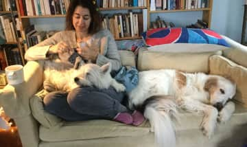 My pets joining me for morning coffee and knitting