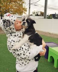 Halloween at the daycare with my fave, Duke!