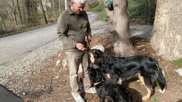 Steve (Judith's husband) dispensing post walk treats to Cheyenne and Kelsey.