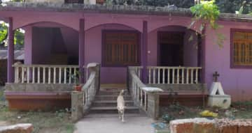 My bungalow with my little dog Shanu