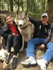 Visiting a wolf sanctuary