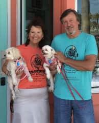 Petsitting in Daytona Beach