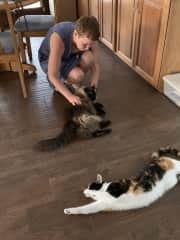 Gretchen hanging out with sweet kitties