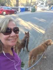 House and dog sitting, Malibu, CA